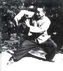 Liu Feng Cai, Bagua expert